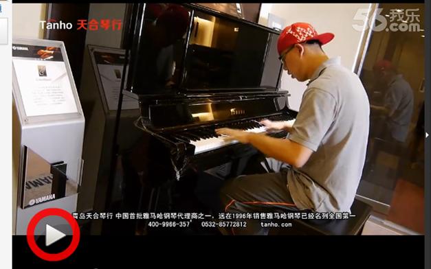 凯撒堡钢琴波顿钢琴雅马哈钢琴专业人士评价
