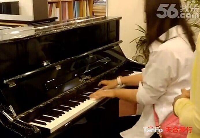 凯撒堡钢琴卡哇伊钢琴,专业人员的比较