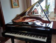 留法博士研究生只认天合琴行雅马哈三角钢琴GC1