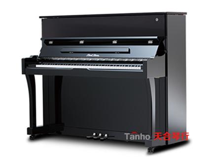 珠江钢琴TN2